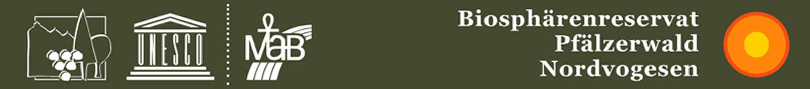 Log+NP grün_bearbeitet-1